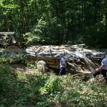 lemn-confiscat