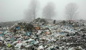 groapa ecologica