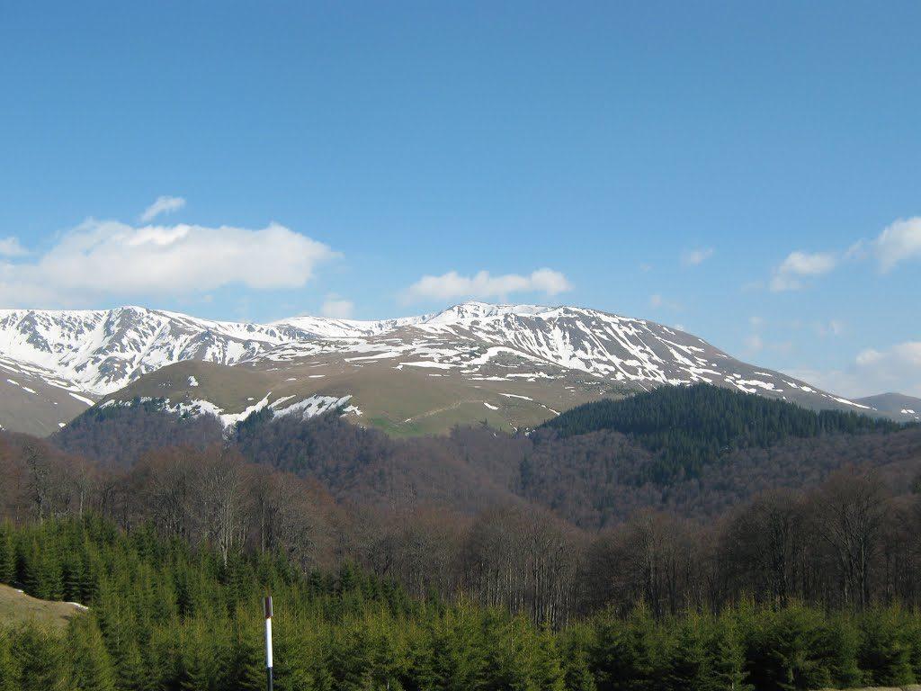 Munții Țarcului