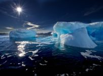 Marea Ross