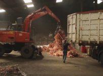 deșeuri reciclate