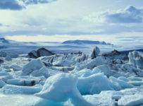 arctice