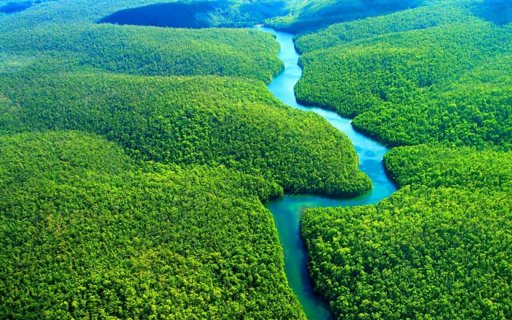 Amazonul