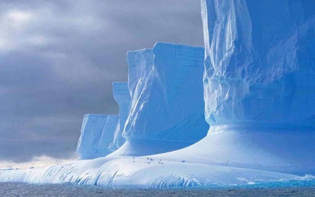 zona arctică