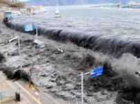Dezastrele naturale