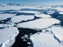 Gheața topită