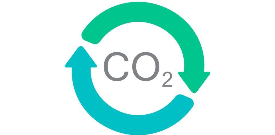 Transformarea carbonului